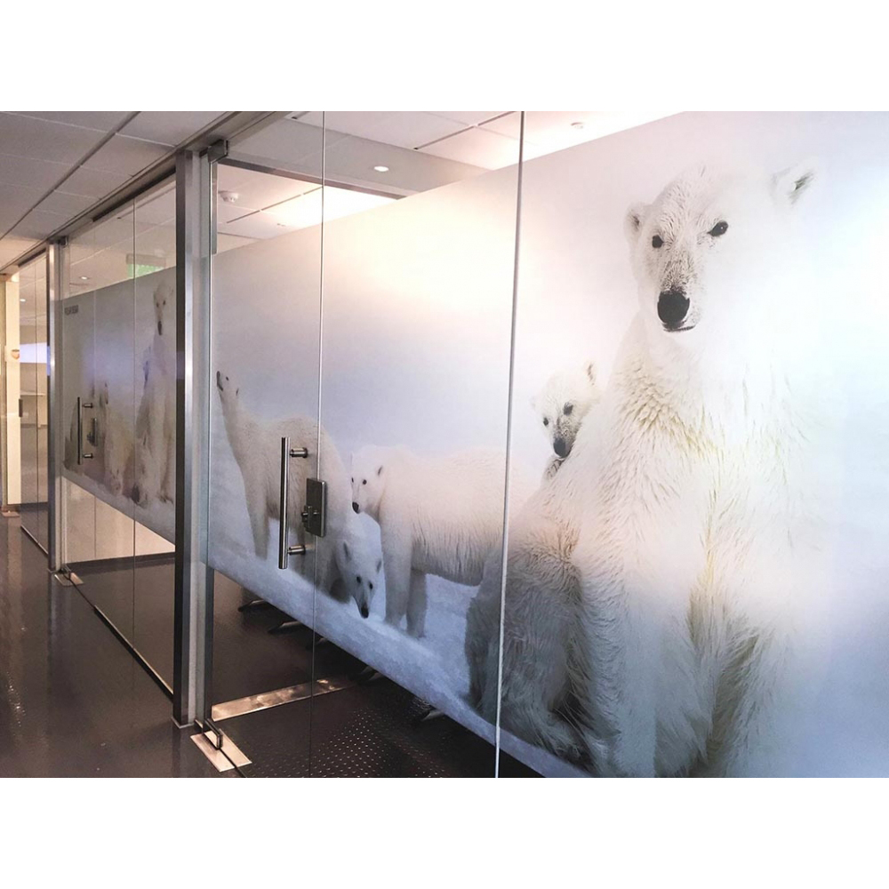 Custom Wall Graphics and Murals - Iowa - American Marking Inc.